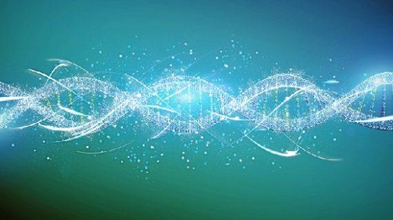 La US participa en el estudio de posibles alteraciones en el ADN implicadas en el cáncer