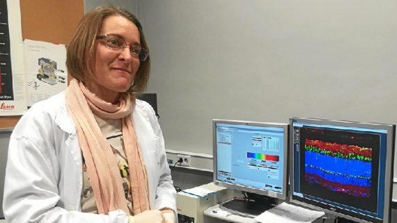 La US investiga el DMAE, principal causa de ceguera en países desarrollados