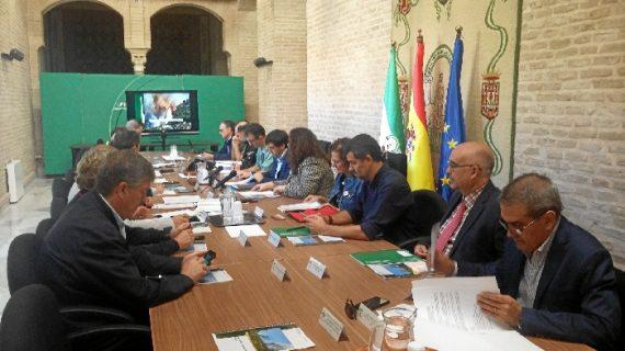 La superficie afectada por incendios forestales en Sevilla se reduce un 95% en un año