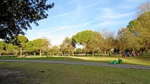 El Parque del Alamillo acoge anillamientos y talleres de observación por el Día Mundial de las Aves