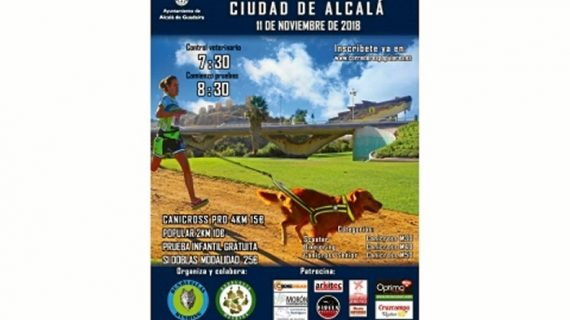 Alcalá de Guadaíra celebra una carrera de Mushing, un deporte que aúna naturaleza y amor por los perros