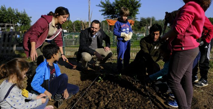 Un Campamento de Huertos Urbanos acercará la agricultura ecológica a menores de entre 7 y 12 años en Sevilla