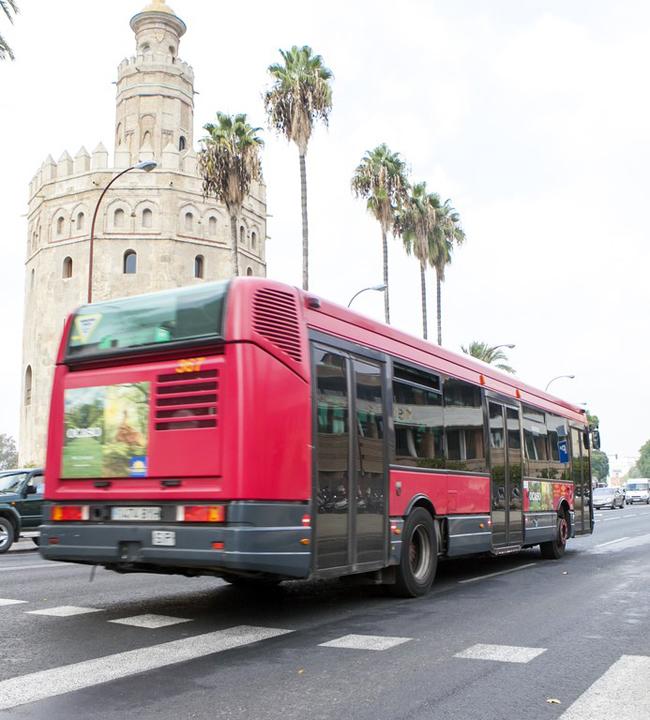 Un autobús de Tussam a su paso por el Paseo Colón.