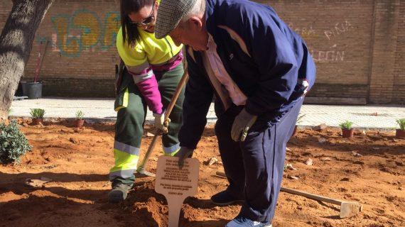 Completada la mejora integral de la calle Tarfia con una plantación ciudadana
