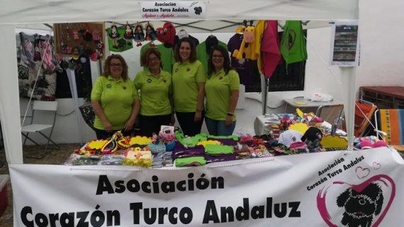 "Asociación Corazón Turco Andaluz: ""Se necesitan más casas de acogida para seguir rescatando"""
