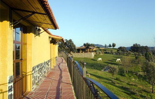 Un hotel para caballos, idea para mejorar el turismo en la sierra norte sevillana