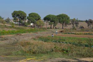 En la imagen, las tierras en las que desarrolla su trabajo. / Foto: Fermín Cabanillas.