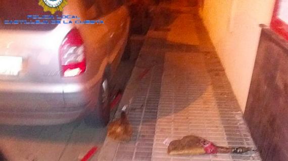 Lo detienen por el rastro de jamones que dejó en la calle cuando robaba en una carnicería