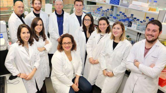 Investigadores sevillanos inician una línea de estudio de enfermedades neurodegenerativas