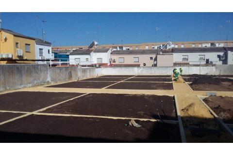 En Alcalá de Guadaira apuestan por el ambiente con huertos urbanos