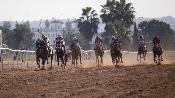 Pineda celebra el Día de Andalucía su tradicional ciclo de Carreras de Caballos