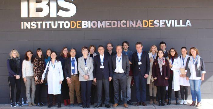 Sevilla acoge una reunión del proyecto europeo 'Tregeneration' para el uso de linfocitos T