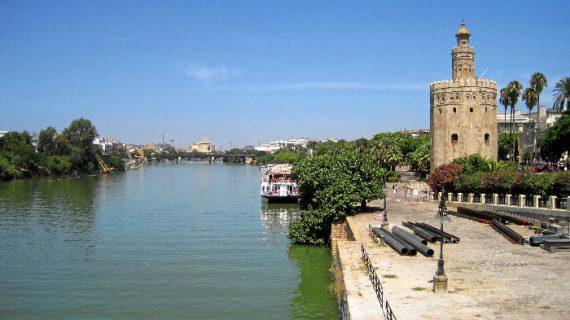 Una recogida de residuos limpia el río por el Día Mundial del Agua