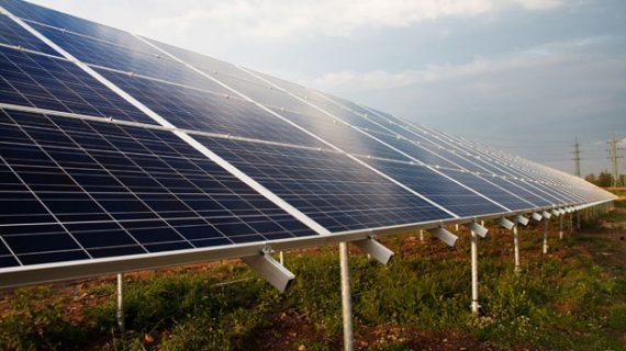 Carmona tendrá la mayor planta fotovoltaica de Endesa en Andalucía