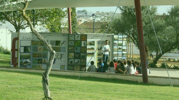 Mairena del Alcor celebra el Día del Medio Ambiente con talleres informativos