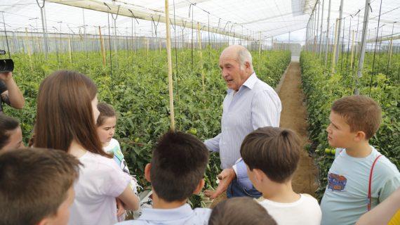 Los Palacios y Villafranca celebra su Día del Tomate, que ya va por su séptima edición