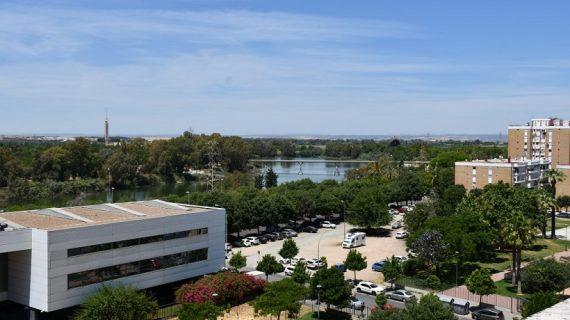 Cedida una parcela en San Jerónimo para la construcción de 189 viviendas de cohousing