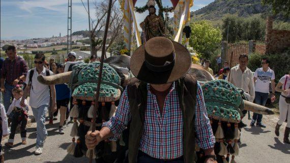 Estepa celebra la romería de San José (Galería)