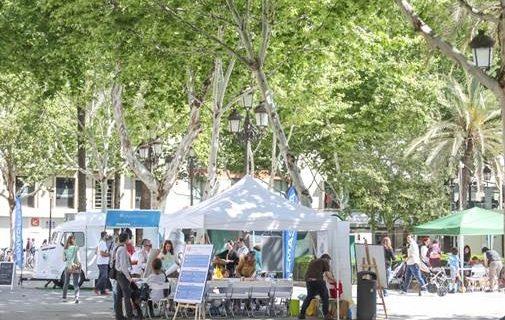 Sevilla se vuelca en la celebración del Día del Medio Ambiente en torno al agua