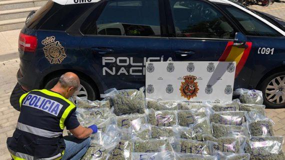 Cuatro detenidos por cultivar marihuana en una vivienda de Dos Hermanas