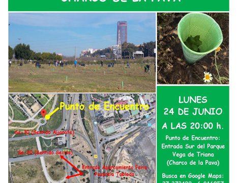 Sevilla más Verde organiza un riego participativo en el Parque Vega de Triana