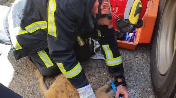 Los bomberos evitan la extensión del incendio en una vivienda de Alcalá de Guadaíra