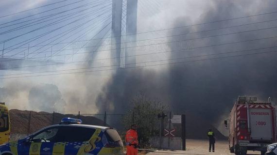 Controlada la situación en el Puente del V Centenario afectado por un incendio de vegetación