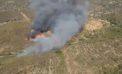 Controlado el incendio forestal en El Madroño