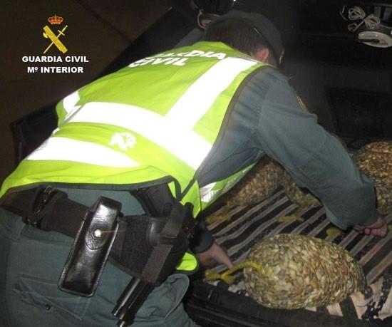 La Guardia Civil investiga en Sevilla a 26 personas por supuesta relación con pesca y comercialización de coquinas contaminadas