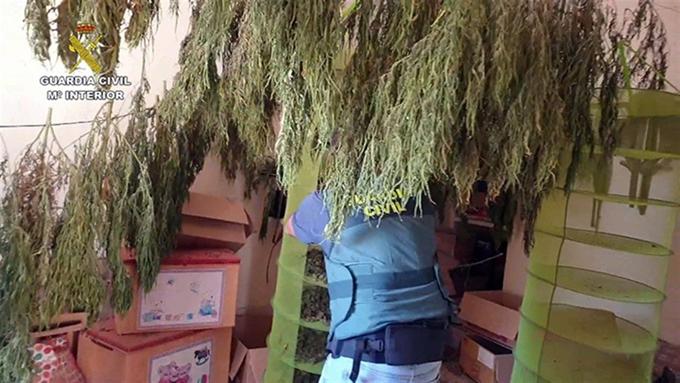 Tres detenidos en La Puebla de Cazalla tras requisarles 40 kilos de marihuana y 9.400 euros en efectivo