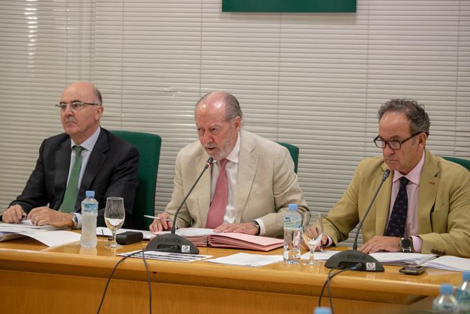 Un momento de la sesión plenaria de la Diputación de Sevilla.