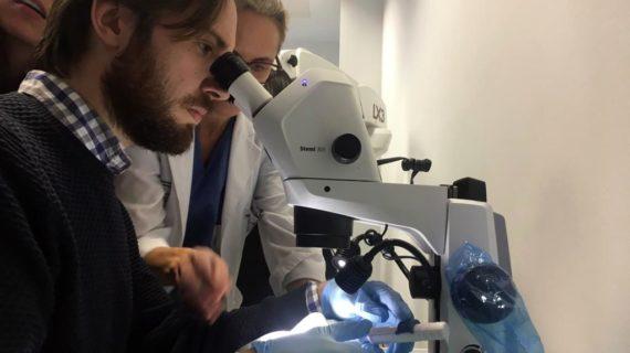El Hospital de Valme celebra un taller monográfico sobre 'Glaucoma' dirigido a oftalmólogos sevillanos