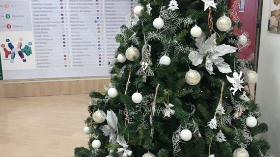 Los pacientes de los Hospitales Macarena  y San Lázaro podrán degustar los menús con un toque navideño