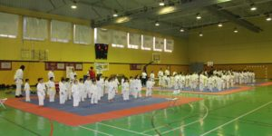 AionSur Karate-Sevilla-2-300x150 El kárate infantil da una nueva lección de solidaridad Deportes Sevilla