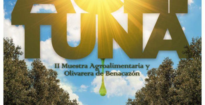 La Feria de la Aceituna de Benacazón, un escaparate comercial para los profesionales del sector