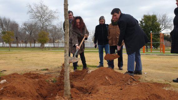 Plan más de 100árboles y 200 arbustos en el Parque Vega de Triana