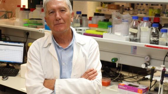 Premiado un estudio de la UPO sobre medicina de precisión en las enfermedades mitrocondriales