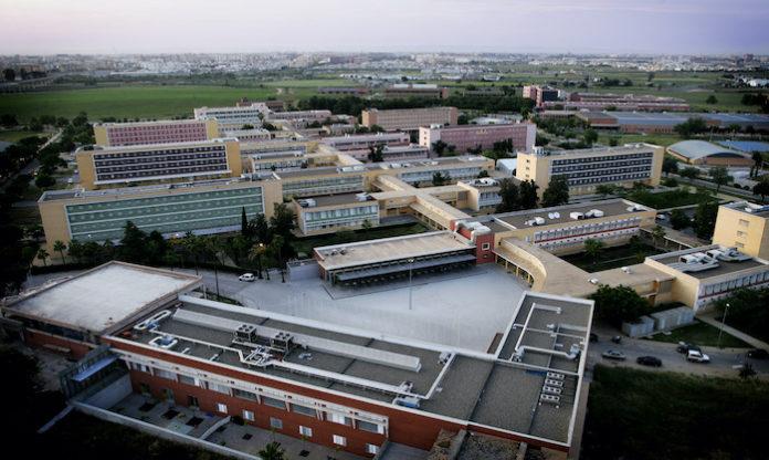 La UPO, primera y única universidad española con todos sus centros de estudios de grado acreditados institucionalmente