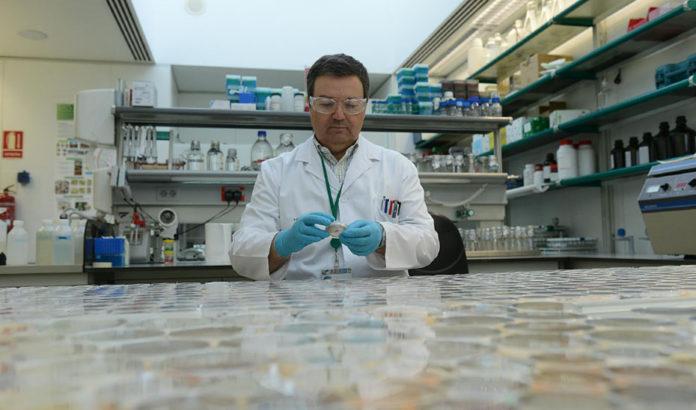 Investigadores andaluces estudian la incidencia de un grupo de enfermedades raras pediátricas